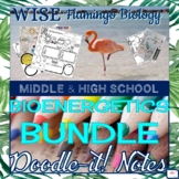 Cellular Energy (Bioenergetics) BUNDLE Doodle Notes - Great Deal!