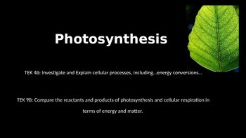 Cellular Energy: Introduction to Photosynthesis - Powerpoint