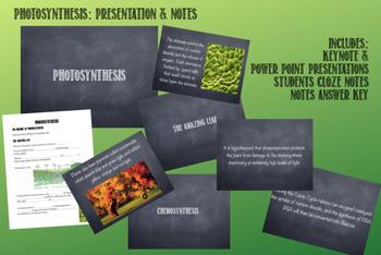 Cellular Energy: Presentation & Notes Bundle