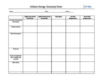 Cellular Energy Summary Chart