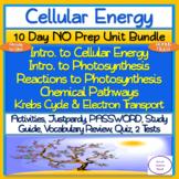 Cellular Energy 10 Day NO PREP Unit Bundle: Lessons, Activ