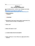 Cellular Energy WebQuest