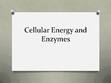 Cellular Energy and Enzymes Question and Answer PowerPoint Review