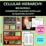 Cellular Hierarchy, Organization of life and Characteristics of Life  BIG Bundle