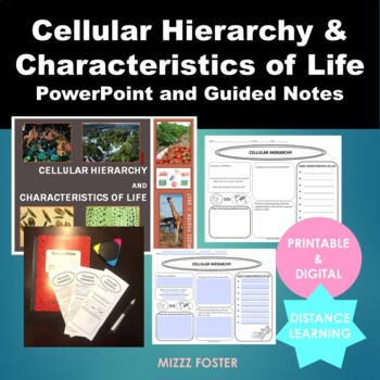Cellular Hierarchy Organization Characteristics Of Life Ppt And Guided Notes