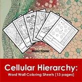Cellular Hierarchy Word Wall Coloring Sheets (13 pages)