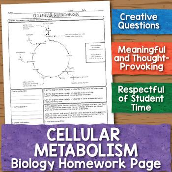 Cellular Metabolism Extension Biology Homework Worksheet