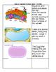 Cellular Organelles: Card Sort activity