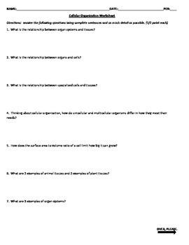 Cellular Organization Worksheet