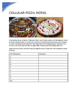 Cellular Pizza Model