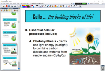 Cellular Processes Bundle - Flipchart, Guided Notes, and Quiz