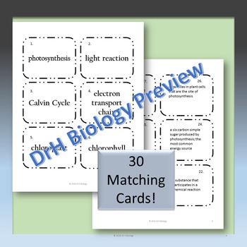 Photosynthesis and Cellular Respiration{w/ Matching Cards}