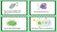 Cellular Processes Task Cards