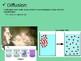 Cellular Processes Unit Powerpoint