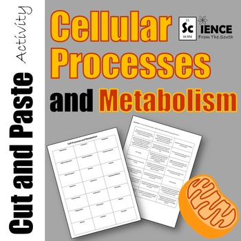 Cellular Processes and Metabolism Cut and Paste Activity