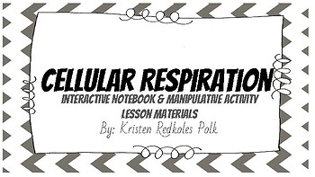 Cellular Respiration Manipulative and Interactive Notebook Activity