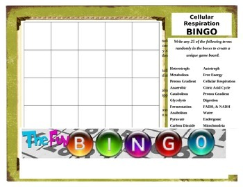 Cellular Respiration Bingo Activity Review