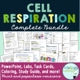 Cellular Respiration Bundle