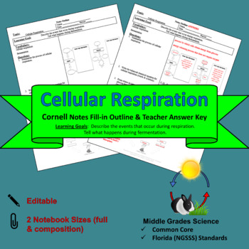 Cellular Respiration Cornell Notes #47