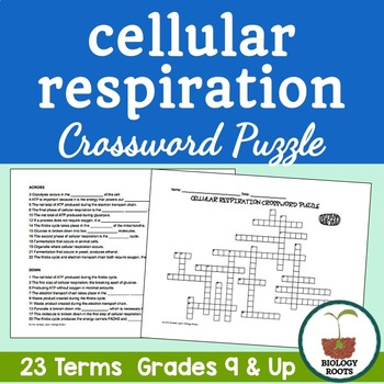 cellular respiration crossword puzzle by biology roots tpt. Black Bedroom Furniture Sets. Home Design Ideas