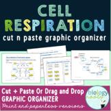 Cellular Respiration Cut-n-Paste Graphic Organizer