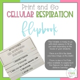 Cellular Respiration Foldable - Includes Video for Distanc