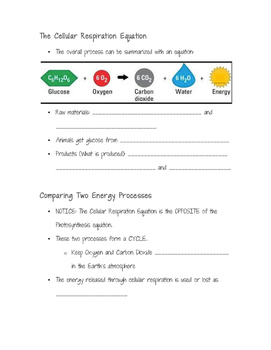 Cellular Respiration Guided Notes