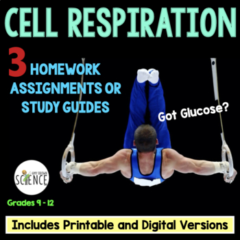 Cellular Respiration Homework Assignments and Study Guide