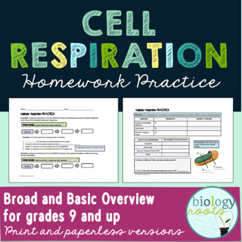 Cellular Respiration Homework Practice