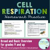 Cellular Respiration Homework Practice