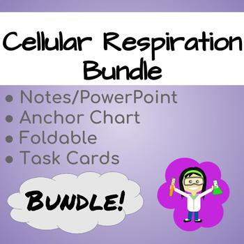 Cellular Respiration Bundle - Notes, Foldable, Anchor Chart and Review Taskcards