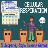 Cellular Respiration Jeopardy-Style