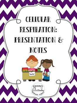 Cellular Respiration: Presentation and Notes