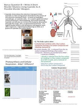 Cellular Respiration Biology Life Science Quiz SPED/Autism/ODD/OHI/SLD/ESL
