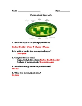 Photosynthesis HW