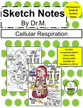 Cellular Respiration Sketch Notes Doodle Notes W/Teacher's Guide & Student Notes