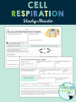 Cellular Respiration Study Guide