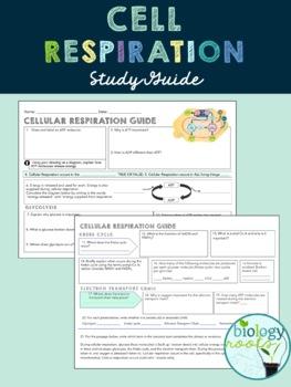 adp study guide various owner manual guide u2022 rh justk co adp study guide 2017 adp study guide download