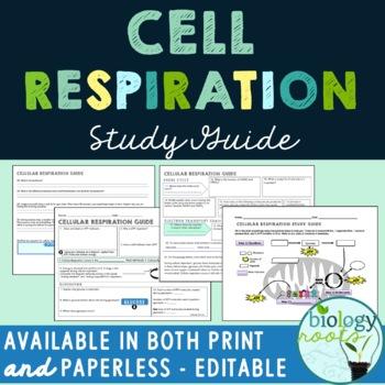 Cellular Respiration Study Guide