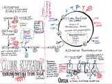 Cellular Respiration Summary Sheet (in color)