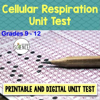 Cellular Respiration Test