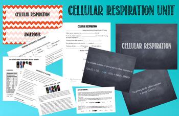 Cellular Respiration: Unit Plan