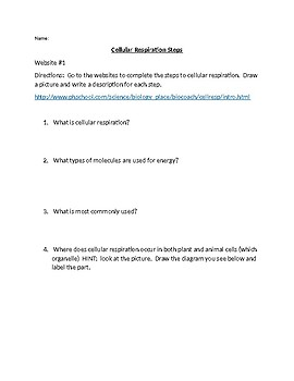 Cellular Respiration Webquest