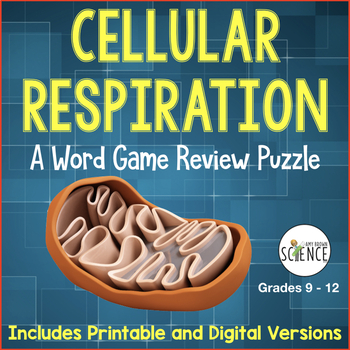Cellular Respiration Word Game Review: Glycolysis, Krebs, Electron Transport
