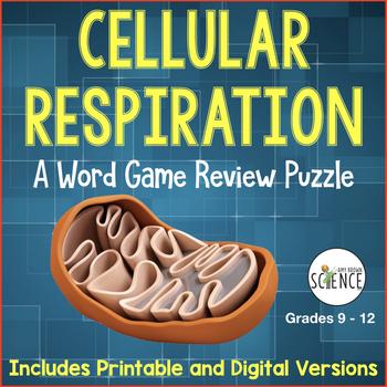 Cellular Respiration Word Game Review: Glycolysis, Krebs, Electron Transport