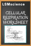 Cellular Respiration Worksheet