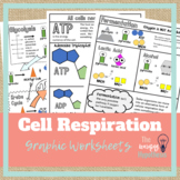 Cellular Respiration Worksheets