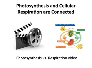 Cellular Respiration and Photosynthesis Lesson - Introductory Lesson Package