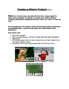 Cellular Respiration and Photosynthesis Meme