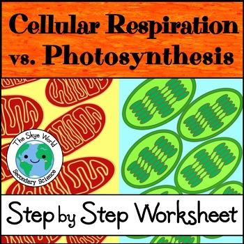 Cellular Respiration vs. Photosynthesis